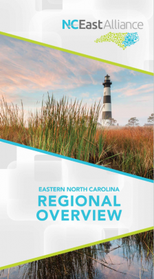 Regional Overview Brochure Cover.PNG